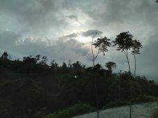 Hasil Foto KameraAsus Zenfone Max Pro M2 Siang Hari