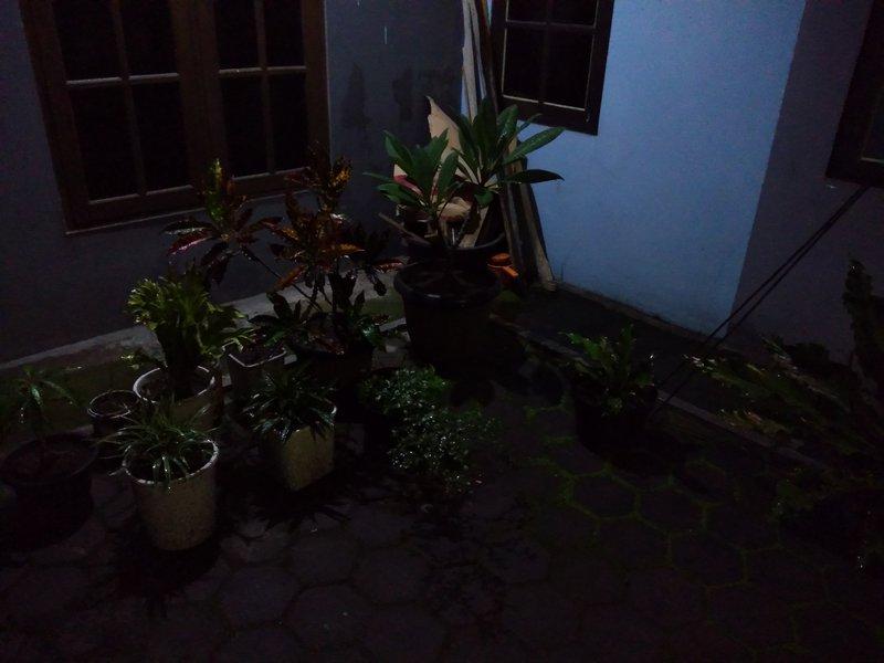 Hasil Foto KameraAsus Zenfone Max M2 Malam Hari dengan LED Flash