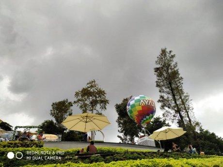Hasil Foto KameraXiaomi Redmi Note 6 Pro Siang Hari