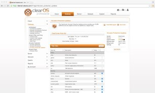 ClearOS 6 Professional.