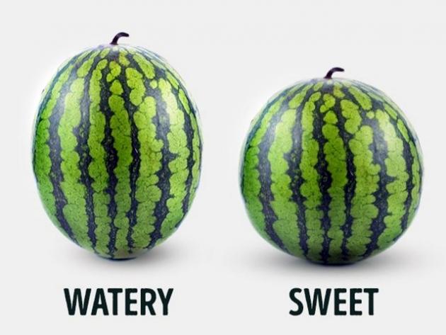 kako-izabrati-savrsenu-lubenicu-savjeti-iskusnog-poljoprivrednika-tuzlanskiba005-20160731