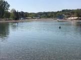 kupanje-na-panonici (3)