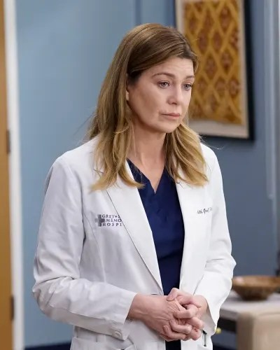 Worried Mer  - Grey's Anatomy Season 16 Episode 14