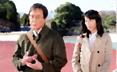 『判事失格!?弁護士夏目連太郎の逆転捜査』渡瀬恒彦,本仮屋ユイカ,渡辺大 主演