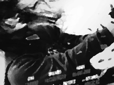 『エージェント・マロリー』(2011年) あらすじ&ネタバレ  ジーナ・カラーノ&ユアン・マクレガー主演