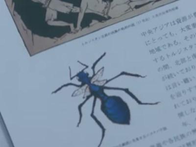 ジゴクバチ(地獄蜂) 相棒16第8話「ドグマ」