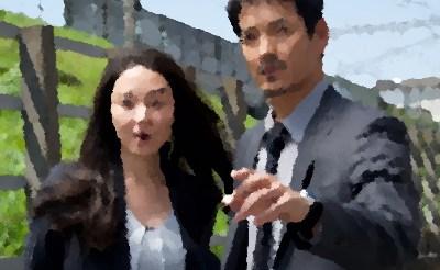 『CHIEF~警視庁IR分析室~』(2018年4月)あらすじ&ネタバレ 沢村一樹,伊藤歩 主演