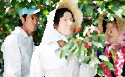 『農家の嫁は弁護士! 神谷純子のふるさと事件簿!!1』 あらすじ&ネタバレ浅野ゆう子 主演、黒坂真美,森川由加里ゲスト出演