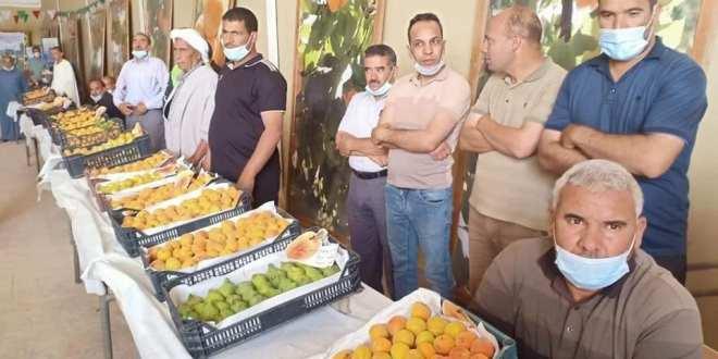 والي الولاية يستمع لانشغالات الفلاحين بمناسبة افتتاج اليوم السنوى للمشمش
