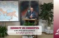 6.5 Schaf und Hirte – BILDER DER EINHEIT | Pastor Mag. Kurt Piesslinger