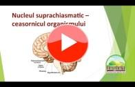 8. Melatonină, un agent al odihnei și refacerii | Dr. Moroșan Sorin | fullHD