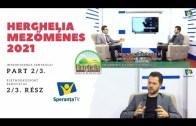 HERGHELIA – MEZŐMÉNES: Introducerea Centrului, Intézmény Bemutatás [Part 2][2021]