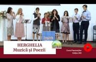 🎶🔊 MUZICĂ | Amintiri de la HERGHELIA – Seara Festivă | Ediția 293