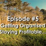 Getting Organized, Productive and Profitable in Your Online Business