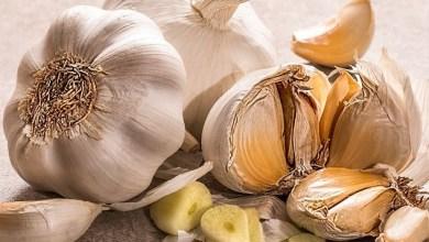 Photo of వెల్లుల్లి తో కరోనా కు చెక్, Garlic helps coronavirus patients