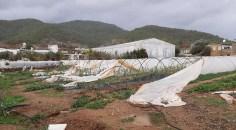 Mersin'de hortum: Seralar zarar gördü