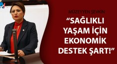 CHP'li Şevkin kabineyi önlem almaya davet etti