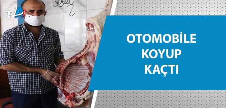 Kasaptan 300 kilo eti dakikalar içinde çaldılar
