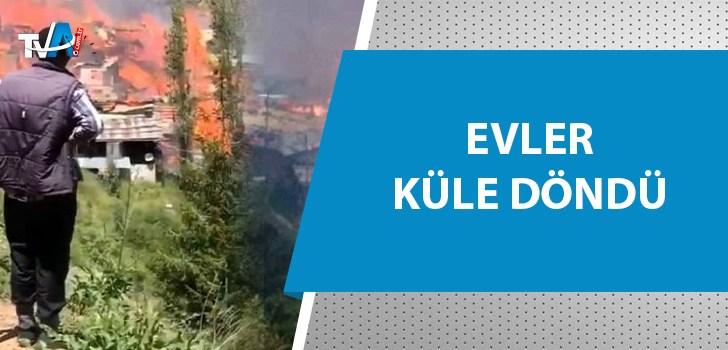Bir köyün tamamı yanıyor