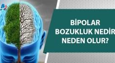 30 Mart Dünya Bipolar Günü!