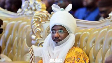 How I was manhandled by Police, DSS, others - Sanusi