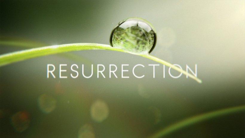 Resurrection Title