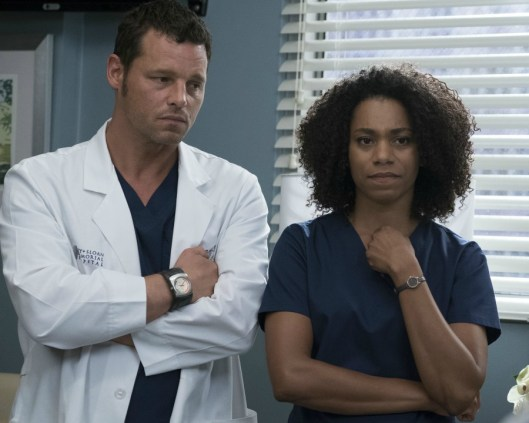 Greys Anatomy 14x04-15