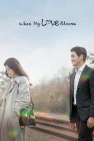 When My Love Blooms (2020) ตอนที่ 1-16