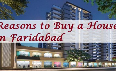 Buy a House in Faridabad