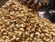 Cashew-Nuts-Nigeria