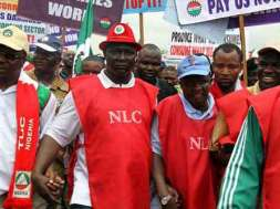NLC minimum wage-TVC