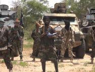 Boko Haram -TVC