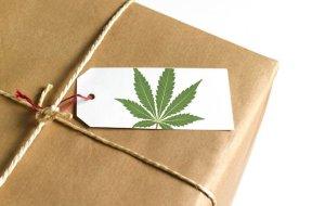 Marijuana-Parcel-TVCNews