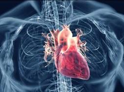 Heart-TVCNews