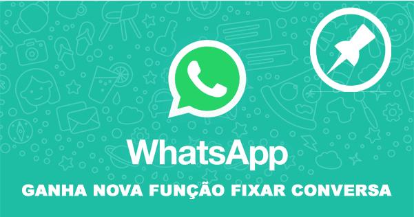 Aplicativo WhatsApp recebeu mais uma nova função de fixar chats mais importantes