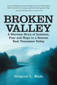 Broken Valley by Gregory L Wade