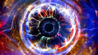 Big Brother, Celebrity Big Brother, Big Brother UK