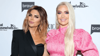 Erika Jayne, Lisa Rinna, Tom Girardi, The Real Housewives of Beverly Hills, RHOBH Season 11, Bravo, Bravo TV, Divorce