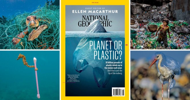 Plastic Iceberg cover