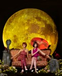 Pushing Daisies Temporada 2 - b