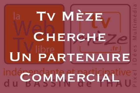 partenaire-commercial
