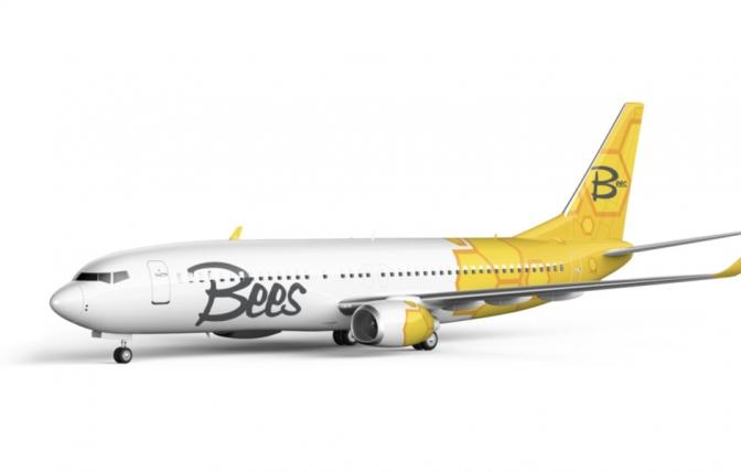 В Україні з'явиться нова лоукост-авіакомпанія Bees Airline