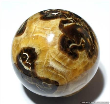 Аммонит-История-происхождение-и-свойства-камня-1