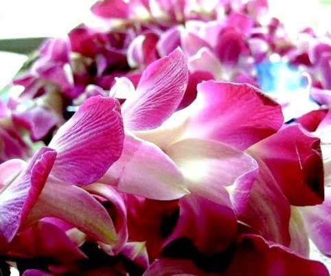 Гавайские-бусы-5