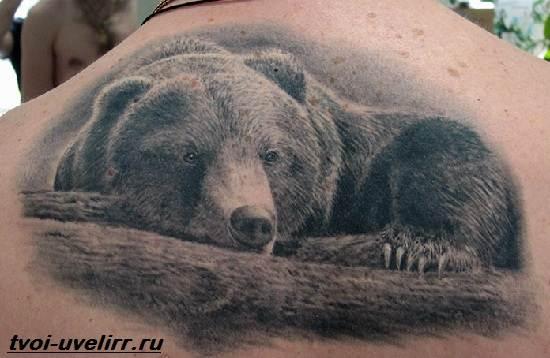 Тату-медведь-Значение-тату-медведь-Эскизы-и-фото-тату-медведь-3