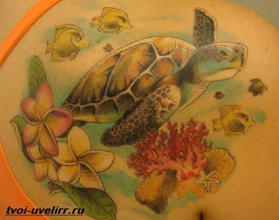 Тату-черепаха-Значение-тату-черепаха-Эскизы-и-фото-тату-черепаха-9