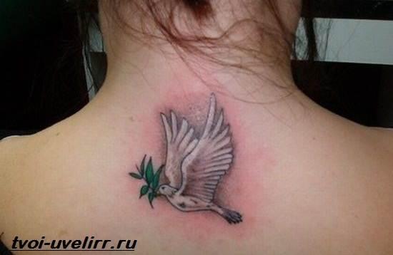 Тату-голубь-Значение-тату-голубь-Эскизы-и-фото-тату-голубь-1