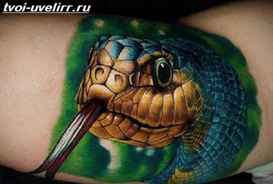 Тату-кобра-Значение-тату-кобра-Эскизы-и-фото-тату-кобра-2