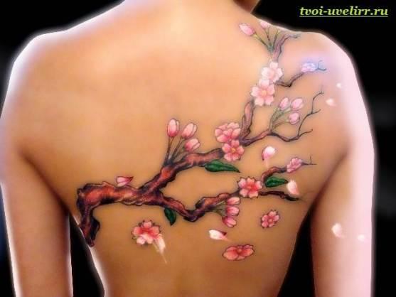 Тату-сакура-Значение-виды-и-особенности-тату-сакура-3