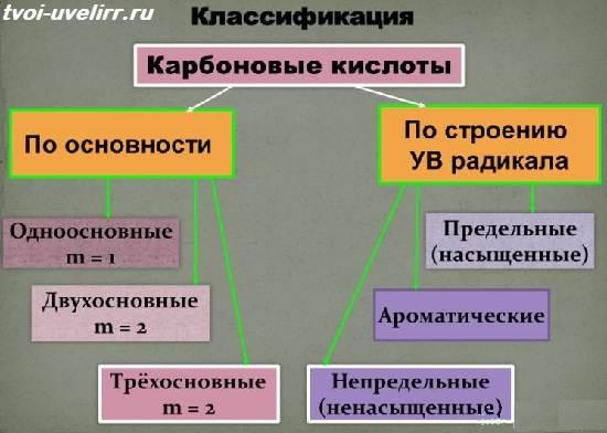 Карбоновые-кислоты-Свойства-и-применение-карбоновых-кислот-5